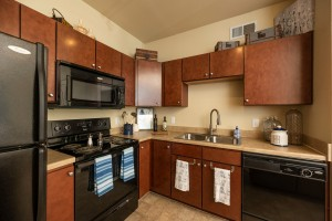 One Bedroom Apartments for rent in Conroe, Texas