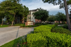 One Bedroom Apartment Rentals in Conroe, TX