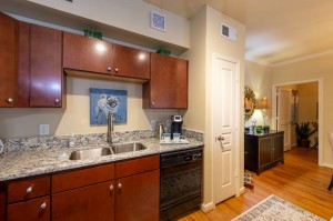 Three Bedroom Apartments for Rent in Conroe, TX - Model Kitchen