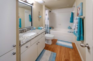 Two Bedroom Apartments for Rent in Conroe, TX - Model Bathroom (2)