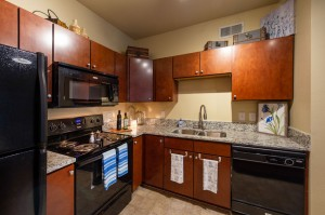 Two Bedroom Apartments for Rent in Conroe, TX - Model Kitchen