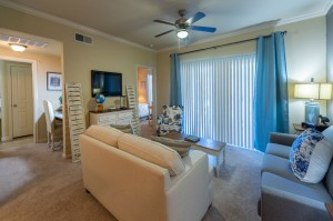 Two Bedroom Apartments for Rent in Conroe, TX - Model Living Room