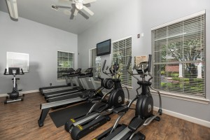 One Bedroom Apartments in Conroe, TX for rent